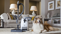 Miele Pets Photo Contest